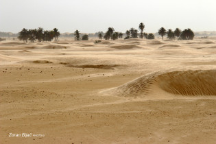 Sahara Desert Near Douz, Tunisia