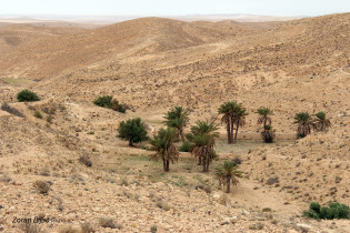 Somewhere Between Casablanca And Marakech, Morocco