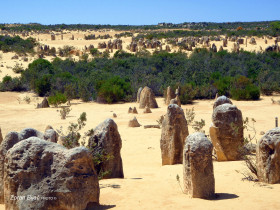 Rock Formations In Pinnacles Desert, Nambung National Park, Western Australia, Australia