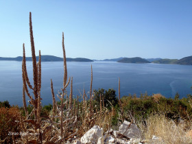 Islands Jakljan, Olipa And Mljet, Adriatic Sea, Dalmatia, Croatia