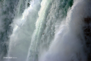 Please, Make Me Powerful, Give Me Just A Little Part Of Your Energy., Niagara Falls, Ontario-Canada/New York-USA