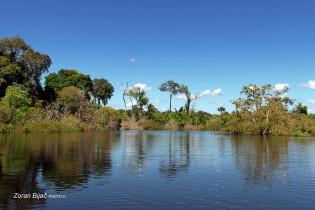 Amazon River, Amazonas, Brazil