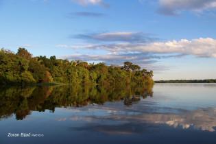 The Amazon River, Amazonas, Brazil