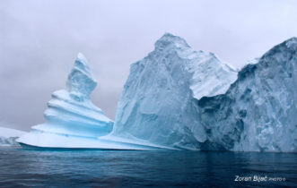 Miss Antarctica, Antarctica