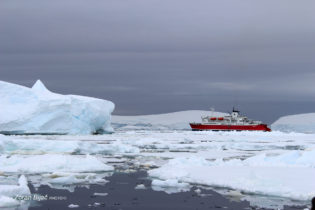 Caution! Moving Of Floating Ice Is Very Dangerous, Sometimes With Fatal Consequences, Antarctica
