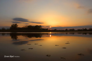 Quiet End Of The Day, Sunset On The Armbend Of The River Drava Near Koprivnica, Podravina, Croatia