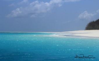White Sandy Beach, Zanzibar, Tanzania