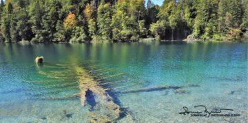 Eternal Rest, Plitvice Lakes, Lika, Croatia; Vječni Odmor, Plitvička Jezera, Hrvatska