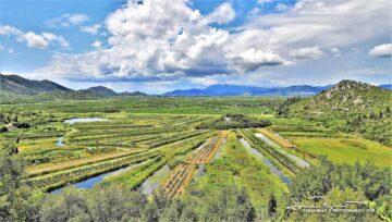 River Neretva Delta, View from the Road to Dubrovnik, Dalmatia, Croatia,